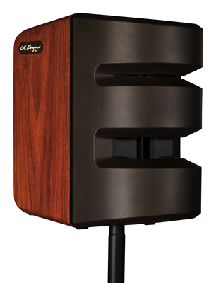 LR Baggs Synapse Personal PA System